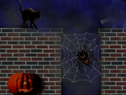 Halloween pictures - Spider