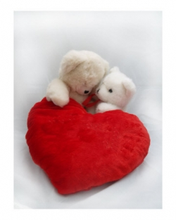 Kiss pictures - Valentine Teddy Bear