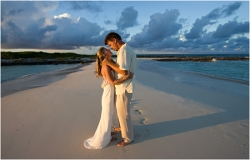 Wedding photos - Romantic wedding