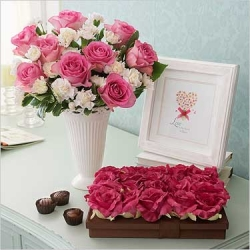 Flower pictures - Valentine Day!