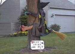 Funny photos - A modern witch