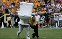 Funny photos - Toilet-tackle