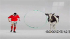 Funny sports & games videos - Super cow