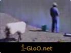 Funny animal videos - A Smart Sheep