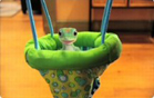 Funny animal videos - Laughing Baby Gecko