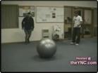 Funny stupid videos - Full Comedy