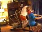 Funny animal videos - LolTV - Funny Compilation