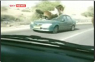 Funny animal videos - Horse Tramples on Car