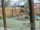 Funny dog videos - Hail-Bound Hound