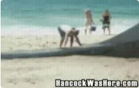 Funny man videos - Whale Thrown To Ocean