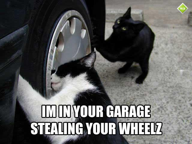 I'm in your garage