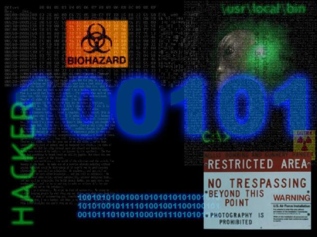 Hacker's monitor