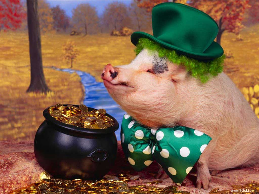 Nobility pig