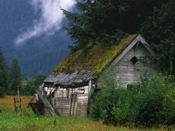 Landscape Wallpaper - Tent