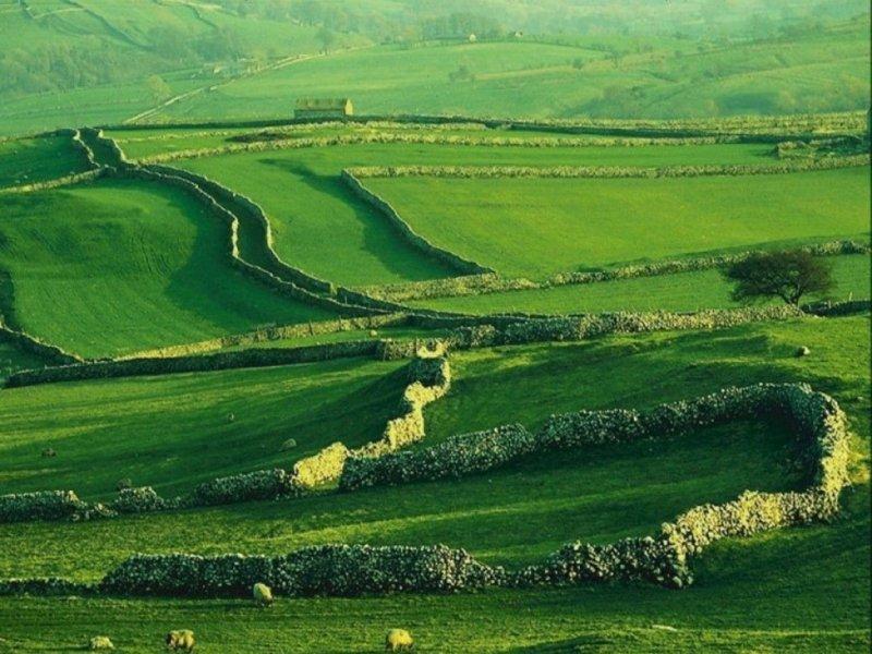 Green highland