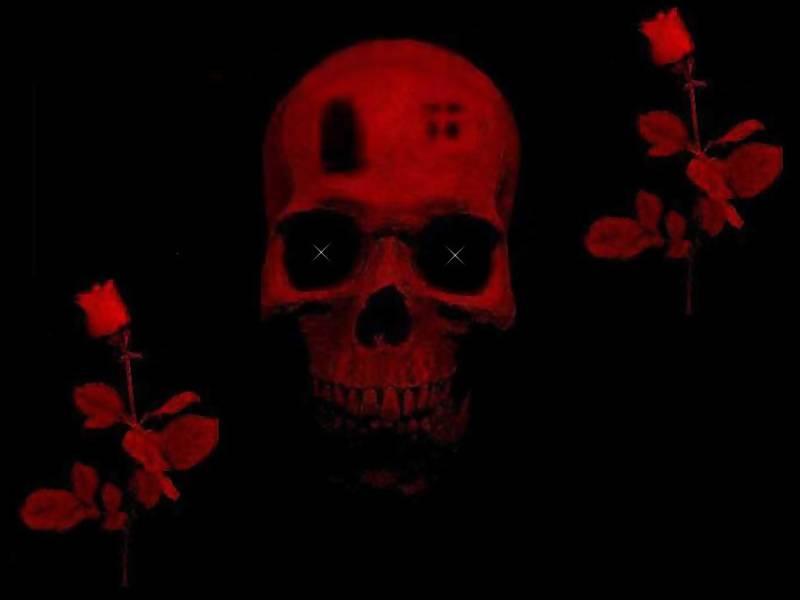 Art skull