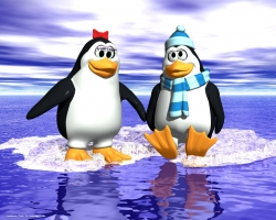 Animated/Cartoon Wallpaper - Couple of penguin