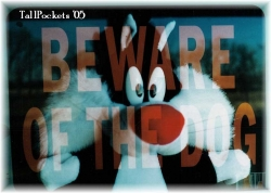 Funny Wallpaper - Beware of the dog
