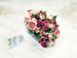 Flower Wallpaper - Bunch of roses