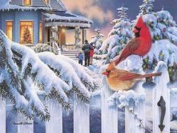 Christmas Wallpaper - Xmas birds
