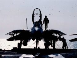 Military Wallpaper - F14 - Tomcat
