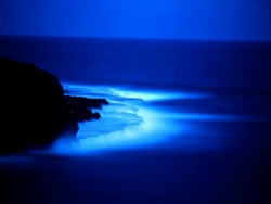 Beach Wallpaper - Night beach