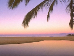 Beach Wallpaper - Pink beach