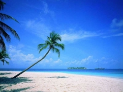 Beach Wallpaper - Blue beach