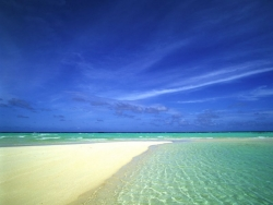 Beach Wallpaper - Horizon