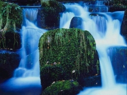Nature Wallpaper - Wild waterfall