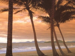 Beach Wallpaper - Sunrise beach