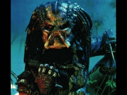 Movie Wallpaper - Predator