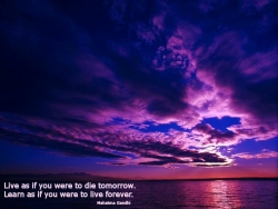 Nature Wallpaper - Violet sunset