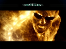Movie Wallpaper - Matrix revolutions