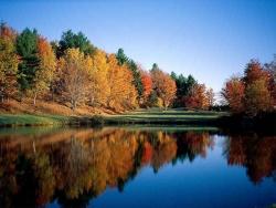 Nature Wallpaper - Autumn