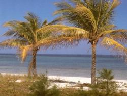 Beach Wallpaper - Beach 2