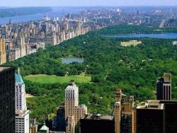 Landscape Wallpaper - Central Park NY
