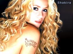 Model Wallpaper - Shakira service