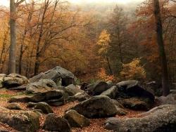 Landscape Wallpaper - Natural rocks