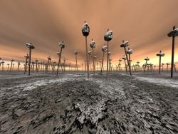 3D and Digital art Wallpaper - Skull field