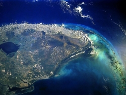 Landscape Wallpaper - Florida Everglade
