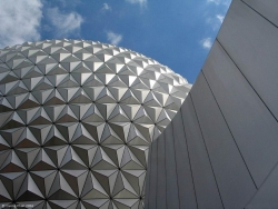Art Wallpaper - Florida Epcot