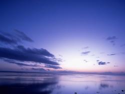 Nature Wallpaper - Blue sunset