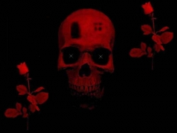 Art Wallpaper - Art skull