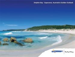 Landscape Wallpaper - Dolphin bay