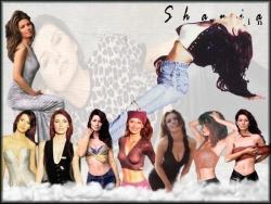 Celebrity Wallpaper - Shania Twain