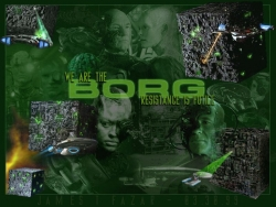 Movie Wallpaper - We are borg