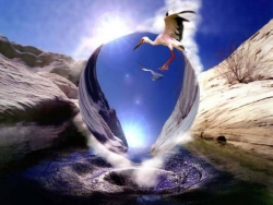 3D and Digital art Wallpaper - Stork & crystal ball