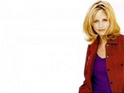 Celebrity Wallpaper - Gellar 4