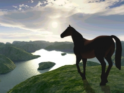 3D and Digital art Wallpaper - Horse into the sun